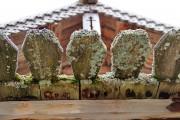 """Музей деревянного зодчества """"Семенково"""". Часовня Илии Пророка - Семенково - Вологодский район - Вологодская область"""