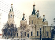 Собор Александра Невского - Егорьевск - Егорьевский район - Московская область