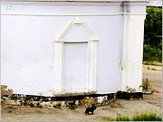 Церковь Благовещения Пресвятой Богородицы - Касимов - Касимовский район - Рязанская область
