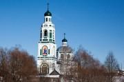 Церковь Троицы Живоначальной - Саконы - Ардатовский район - Нижегородская область