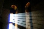 Лужецкий Ферапонтов монастырь. Собор Рождества Пресвятой Богородицы - Можайск - Можайский городской округ - Московская область