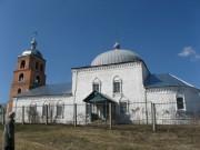 Церковь Троицы Живоначальной - Нижние Вязовые - Зеленодольский район - Республика Татарстан
