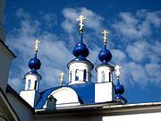 Церковь Илии Пророка - Мамонтово - Ногинский район - Московская область