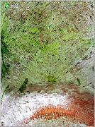 Церковь Иоанна Богослова - Замаричье (Демухино) - Судогодский район и г. Радужный - Владимирская область