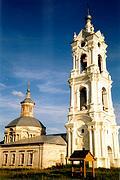 Церковь Спаса Преображения - Погост - Касимовский район - Рязанская область