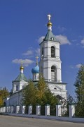 Церковь Троицы Живоначальной - Шарапово - Шатурский район - Московская область