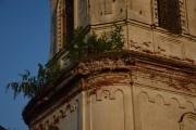 Церковь Спаса Нерукотворного Образа - Илев - Вознесенский район - Нижегородская область