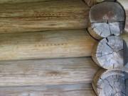 Музей деревянного зодчества Витославлицы. Неизвестная часовня из деревни Гарь Маловишерского района - Юрьев - г. Великий Новгород - Новгородская область