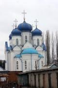 Церковь Казанской иконы Божией Матери - Панино - Панинский район - Воронежская область