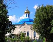 Церковь Покрова Пресвятой Богородицы - Ильино - Дмитровский район - Московская область