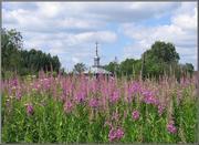 Часовня Параскевы Пятницы - Баскаково - Гагаринский район - Смоленская область