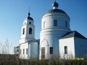 Церковь Спаса Нерукотворного Образа - Курыничи - Козельский район - Калужская область