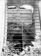 """Церковь иконы Божией Матери """"Знамение"""" - Холмы - Истринский район - Московская область"""