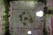 Гайново. Покрова Пресвятой Богородицы, церковь