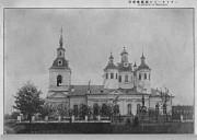 Церковь Троицы Живоначальной - Медведь - Шимский район - Новгородская область