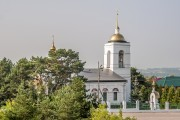 Церковь Троицы Живоначальной - Лужники - Ступинский район - Московская область