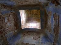 Церковь Успения Пресвятой Богородицы - Вепри (Вепрея) - Заокский район - Тульская область