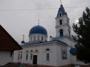 Томск. Троицы Живоначальной, церковь