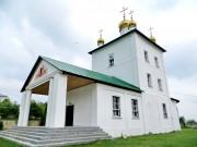Димитриевский мужской монастырь - Дмитриево - Скопинский район - Рязанская область