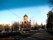 Церковь Илии Муромского - Власиха - Одинцовский район, г. Звенигород - Московская область