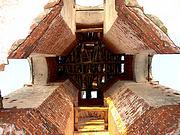 Колокольня церкви Спаса Преображения - Спасское - Угличский район - Ярославская область