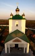 Димитриевский мужской монастырь. Церковь Димитрия Солунского - Дмитриево - Скопинский район - Рязанская область