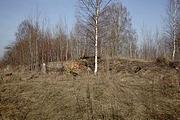 Церковь Димитрия Солунского - Клен - Хвастовичский район - Калужская область
