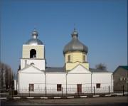 Церковь Рождества Христова - Большое Солдатское - Большесолдатский район - Курская область
