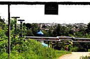 Церковь Фаддея, архиепископа Тверского - Витебск - Витебский район - Беларусь, Витебская область