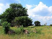 Церковь Параскевы Пятницы - Карники - Венёвский район - Тульская область
