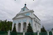 Церковь Димитрия Солунского - Щорсы - Новогрудский район - Беларусь, Гродненская область