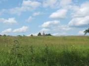 Церковь Троицы Живоначальной - Иружи, урочище - Ржевский район и г. Ржев - Тверская область