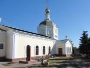 Кафедральный собор Николая Чудотворца - Камышин - Камышинский район и г. Камышин - Волгоградская область