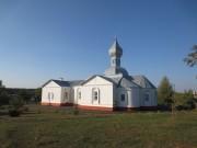 Луховицы. Троицы Живоначальной, церковь