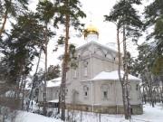Воронеж. Антония (Смирницкого) в Тенистом, церковь