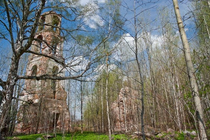 Церковь Владимирской иконы Божией Матери, Толстиково