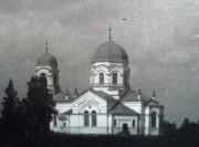 Церковь Входа Господня в Иерусалим - Посолодино - Плюсский район - Псковская область