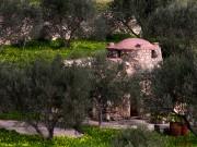 Церковь Василия Великого - Эпана-Эпископи - Крит (Κρήτη) - Греция