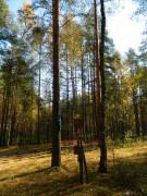 Старообрядческий мужской скит - Леонтий, урочище - Орехово-Зуевский район - Московская область
