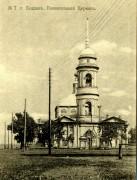 Церковь Вознесения Господня - Мичуринск - Мичуринский район и г. Мичуринск - Тамбовская область