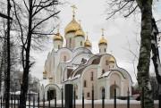 Церковь Матроны Московской в Дмитровском - Москва - Северный административный округ (САО) - г. Москва