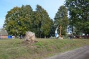 Церковь Покрова Пресвятой Богородицы - Стародуб - Стародубский район и г. Стародуб - Брянская область