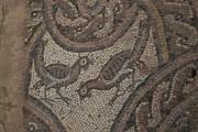 Охрид. Климентовский монастырь. Раннехристианская базилика