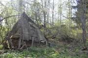 Церковь Николая Чудотворца - Старухино, урочище - Боровичский район - Новгородская область