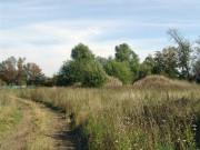 Церковь Преображения Господня - Кочерово - Нерехтский район - Костромская область