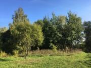 Васильевское. Покрова Пресвятой Богородицы, церковь