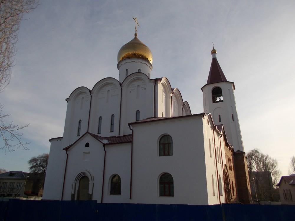 Церковь Тихона Задонского (строящаяся), Саратов