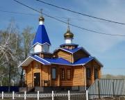Васильевка. Рождества Христова, церковь
