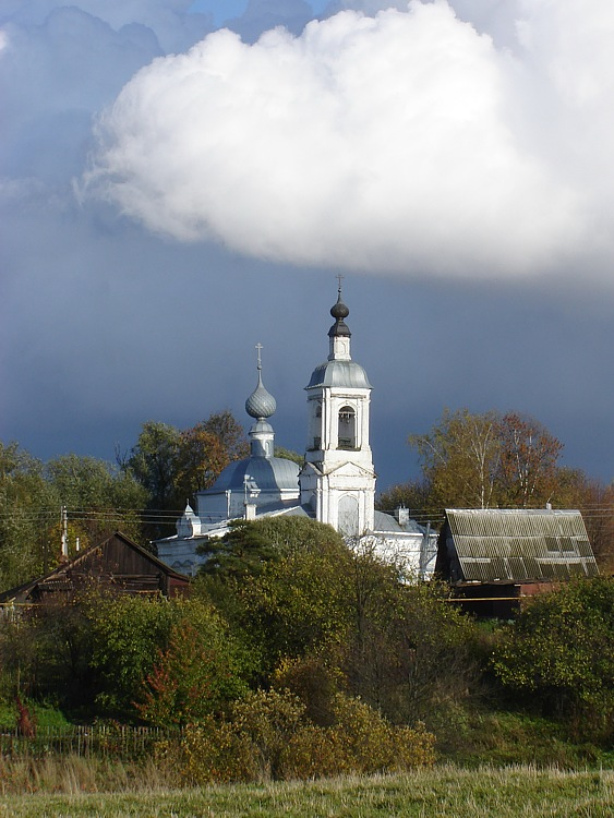 Ивановская область, Приволжский район, Толпыгино. Церковь Воскресения Словущего, фотография. общий вид в ландшафте