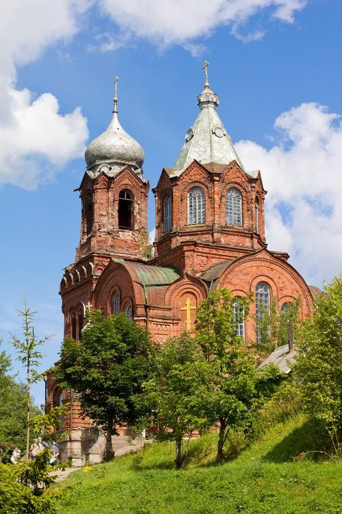 Псковская область, Дедовичский район, Вышегород. Церковь Михаила Архангела, фотография. общий вид в ландшафте